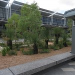 Grasstrees Perth International Terminal d